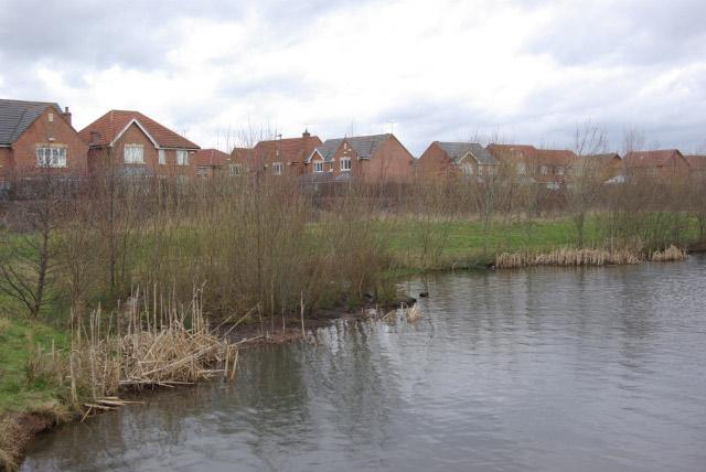 Moorway Lane Pond