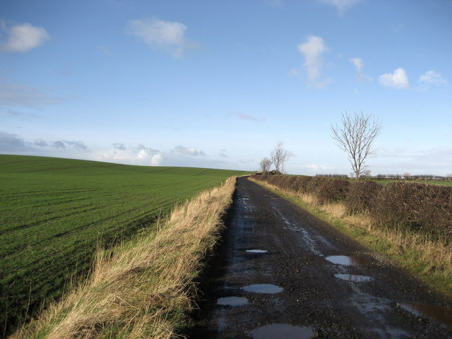 Access Lane to Hallfield