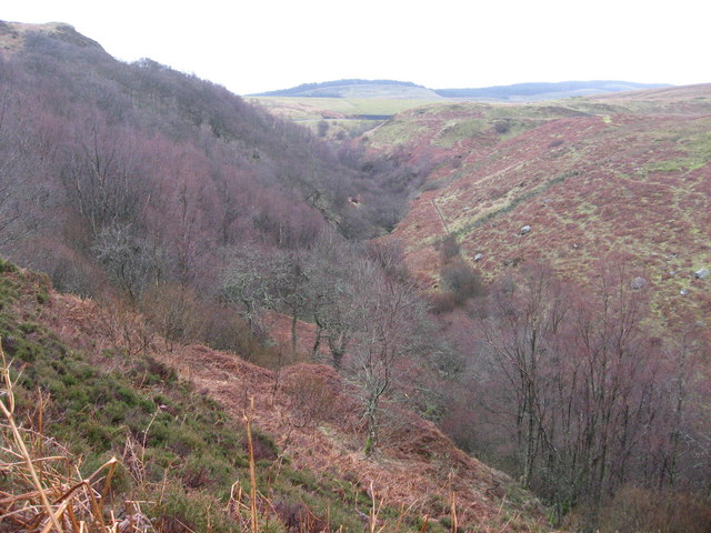 Looking up Burn Crook