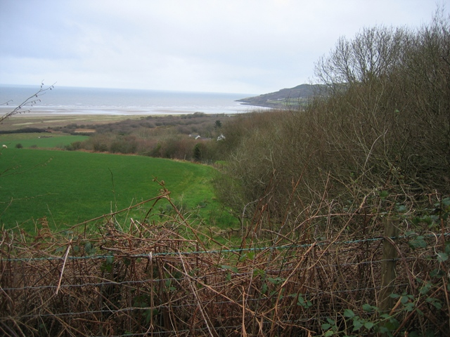 Hedge and Field above Red Wharf Bay