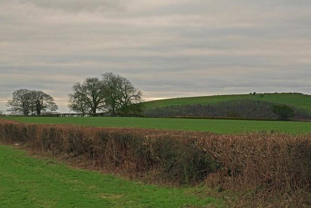 View from A30 toward Cann Farm