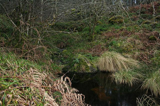 The Black Burn flowing into Loch Romach.