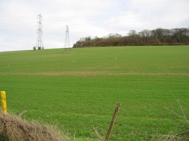 Footpath (marked by white sticks) across field, Pett Bottom.