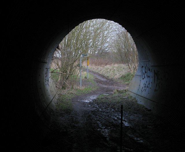 Underpass, Calder Wood