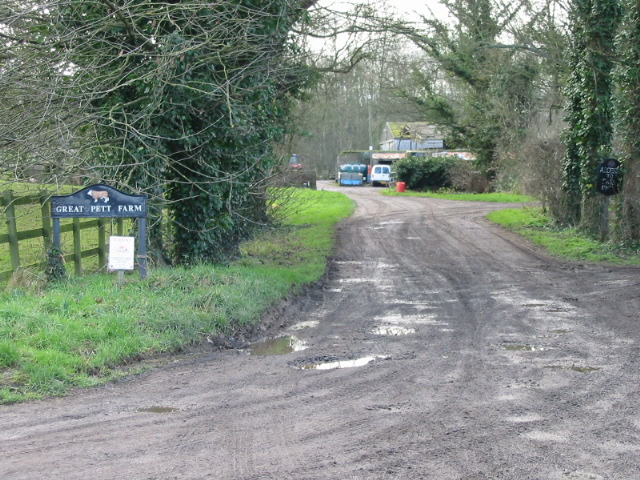 Farm road to Great Pett Farm.