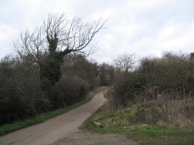 Bridleway north of Brigstock