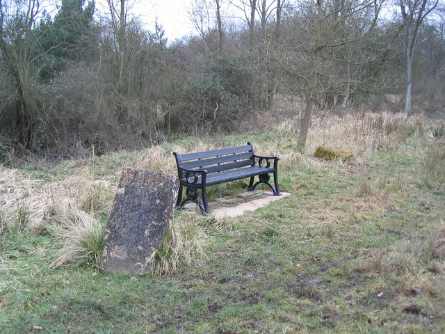 Three memorials: stone, seat, and new Bocase Tree