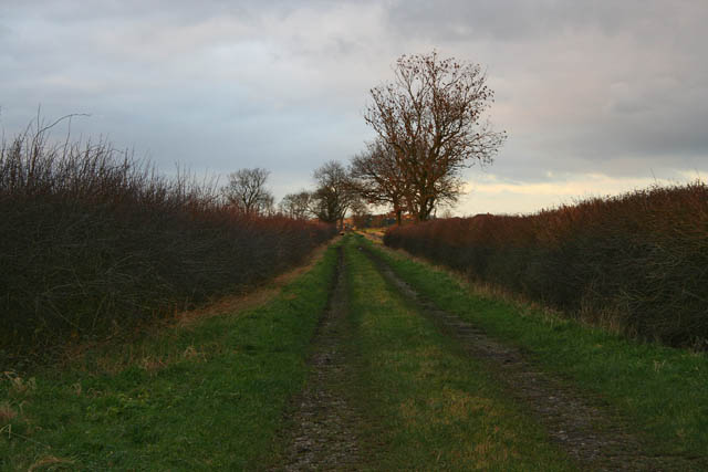 Farm track to Holme Hill Farm