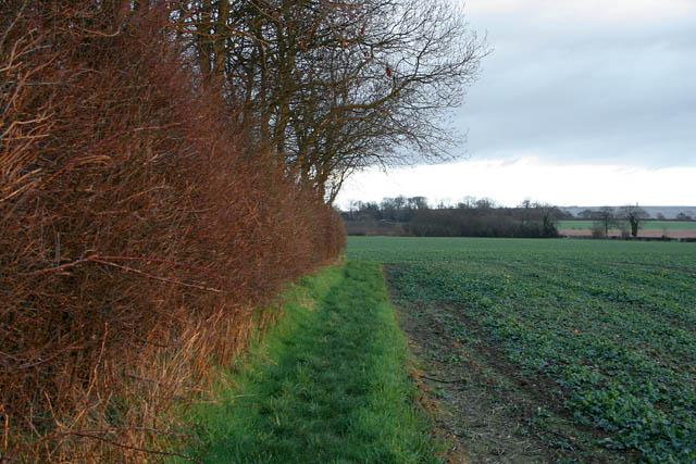 Farmland on South Kelsey Carrs