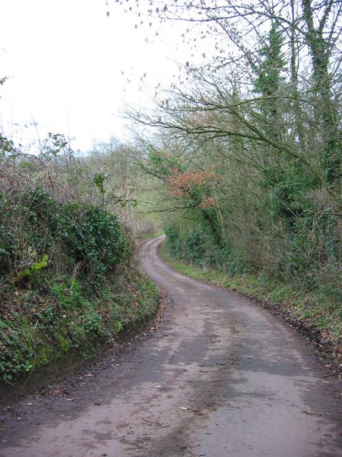 Lane to Bradley Brook