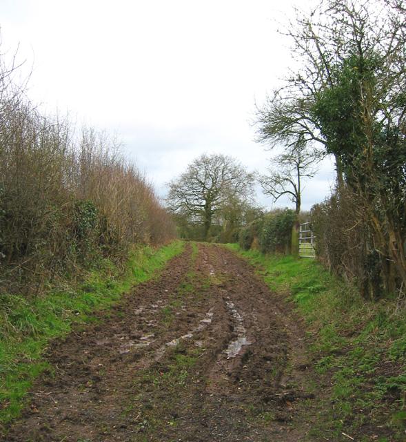 Footpath south of Bradley Brook
