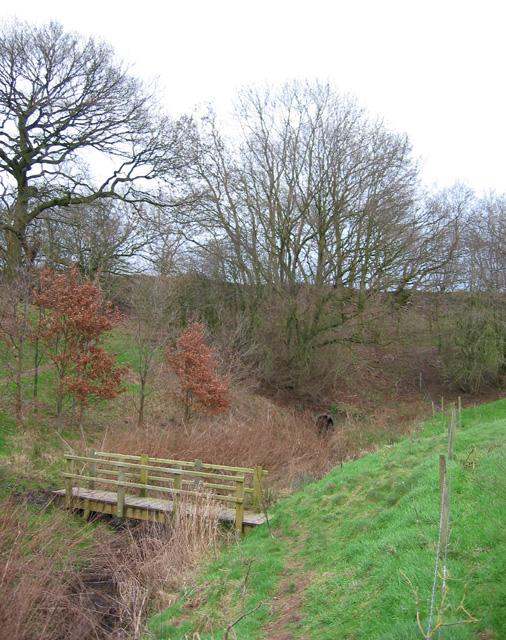 Footbridge and disused railway embankment