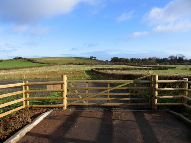 Gate and Fields