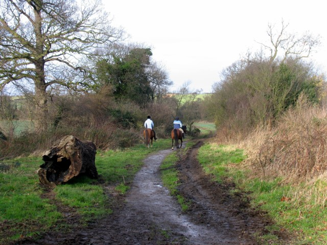 Bridleway from Tickow Lane