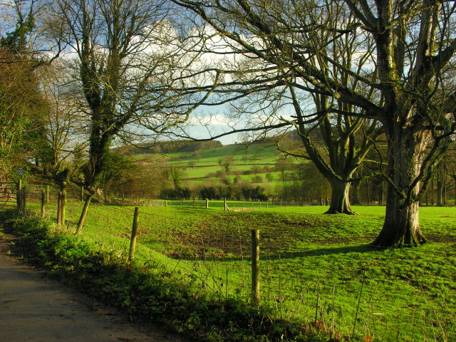 View from Shropshire Way