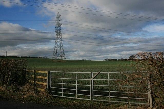 Field Near Baulk Bridge