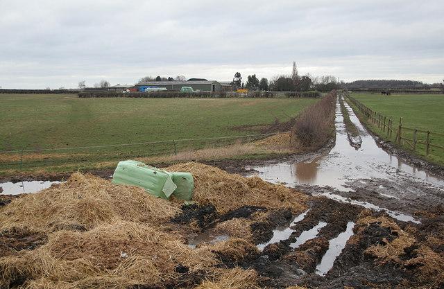 Whatton Fields
