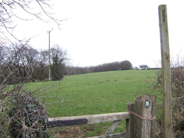 Bridleway to Loysey
