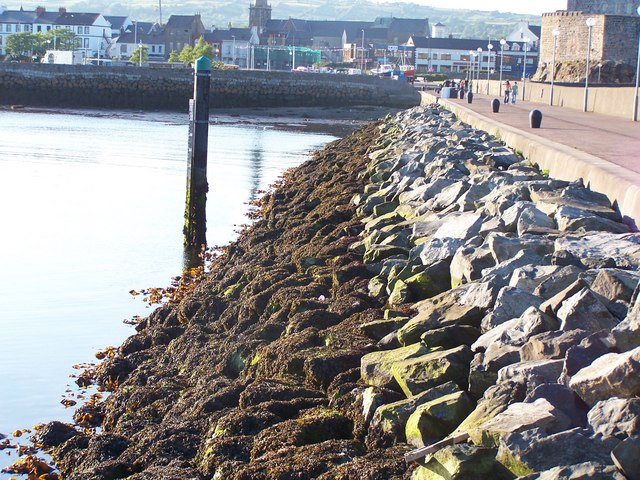 Carrickfergus Harbour Wall