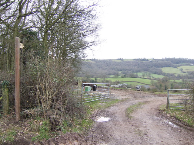 Footpath to Cwm-Collier