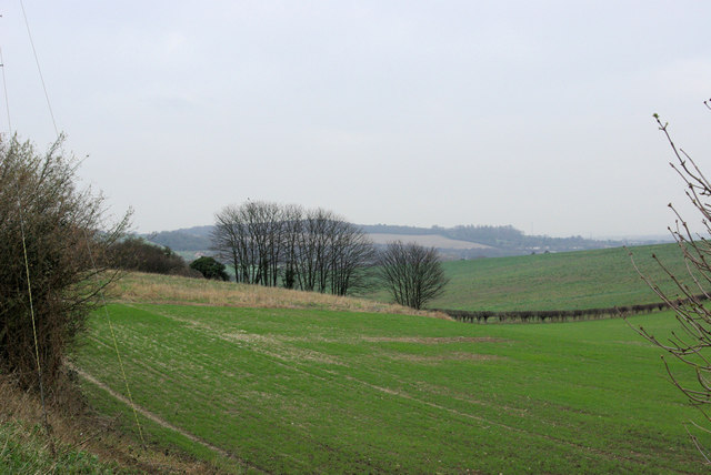 View from Bower Lane