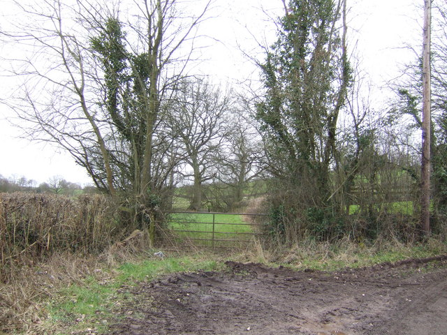Field entrance by the lane south of Tregare Mill