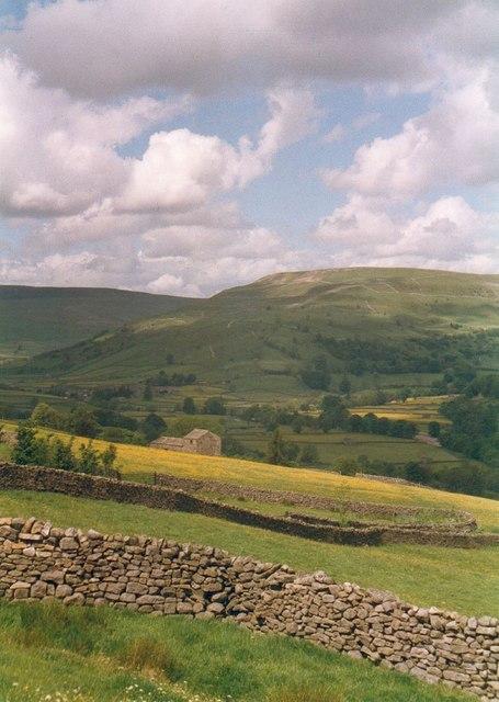 Walls and meadowland near Muker