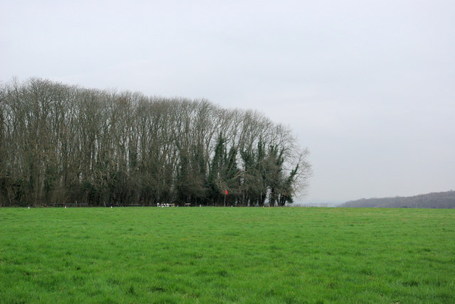 Lower Wood and Windsock