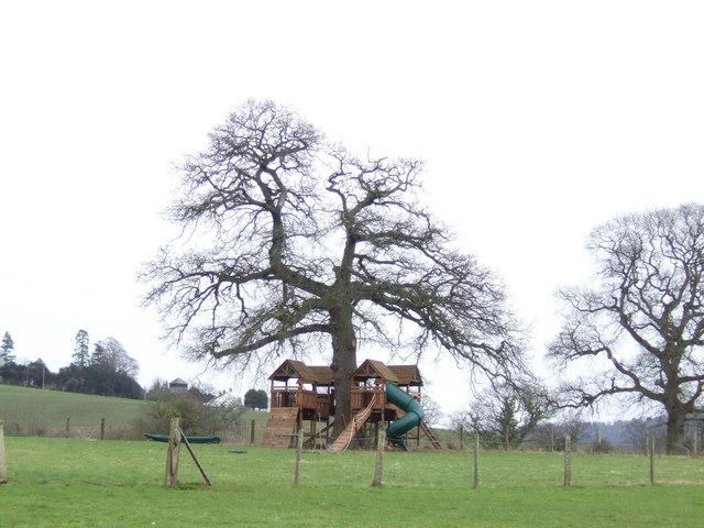 De-luxe treehouse