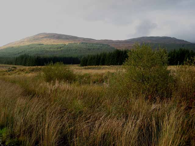 Looking across the upper valley of the River Dee, Clatteringshaws Forest