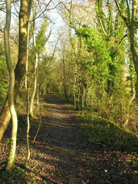 The Jack Mytton Way along a disused railway line