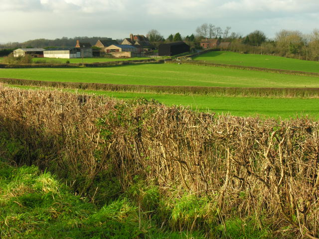 View across fields west of Benthall Hall towards Benthall Hall Farm