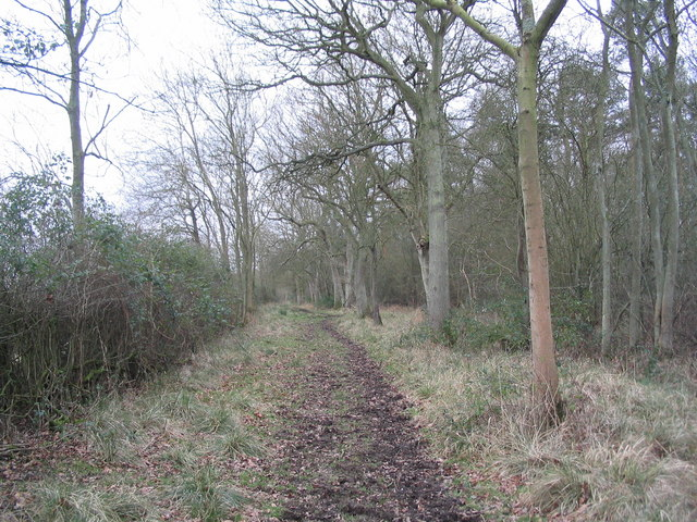 Bridleway along east edge of Harry's Park Wood