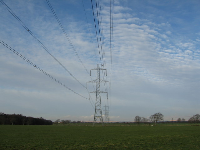 Grazing and Pylons