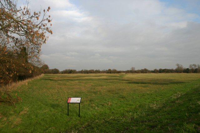 Soham Meadow