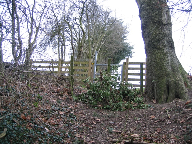 Stile at Coed y Cra