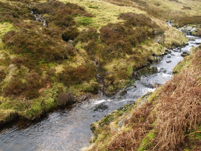 South Grain, Chapelhope Burn.
