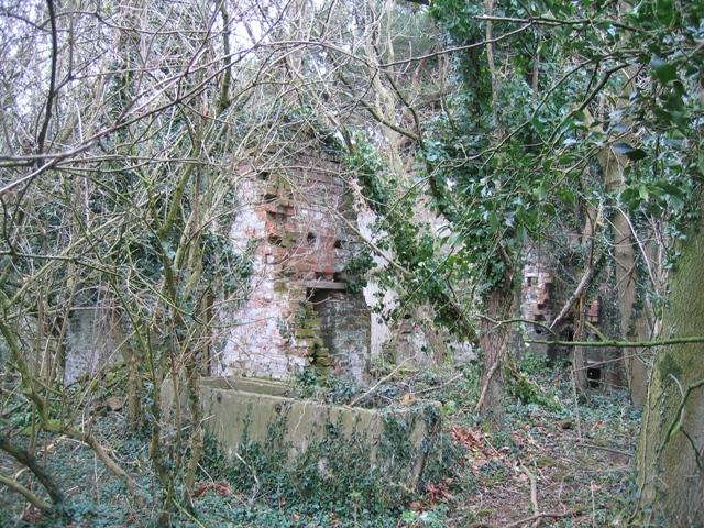 Ruin in Coed y Cra