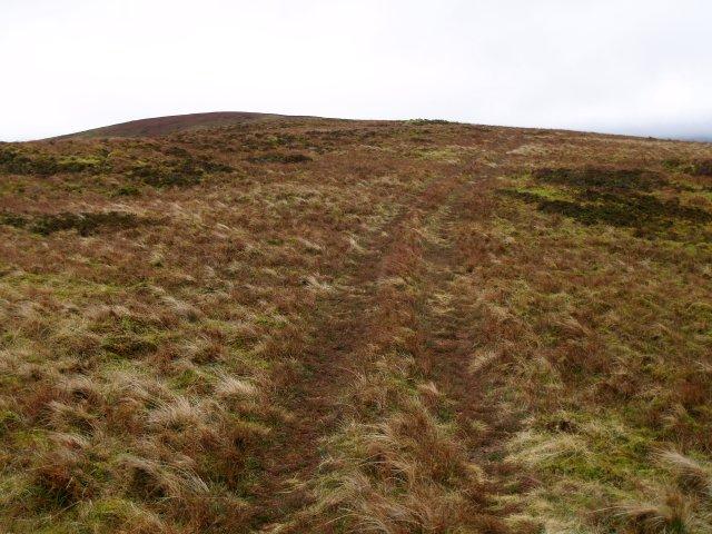 Faint track, Paper Hill