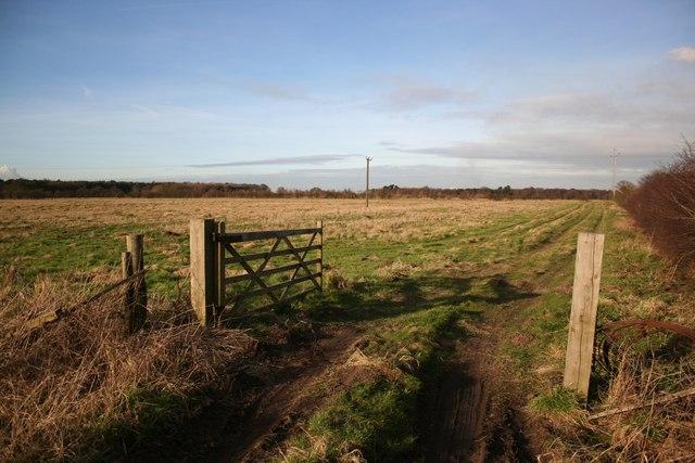 Farmland off Brigg Road