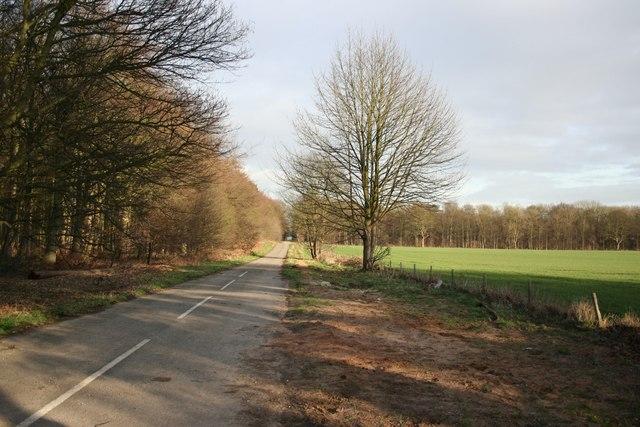 Sturton Lane