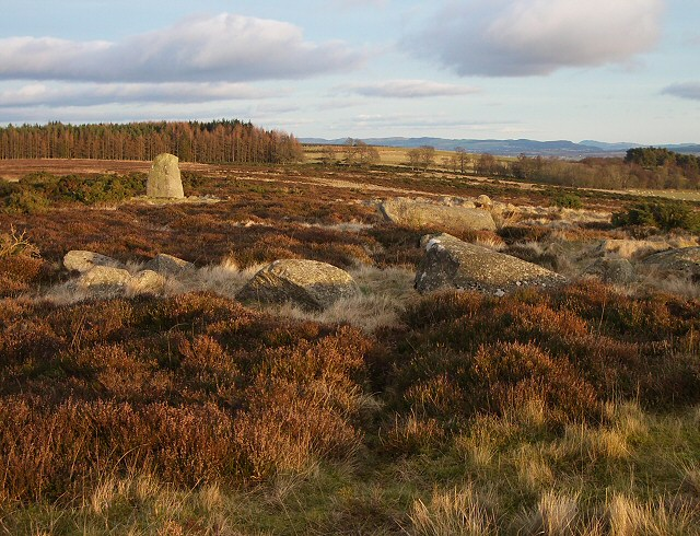 Standing stone and stone circles