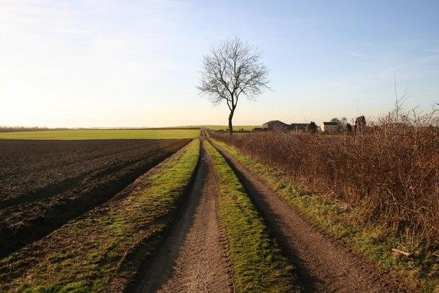 Track to Sweet Hills Farm