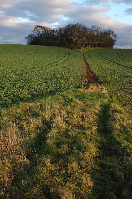 Bridleway at Hill Croome