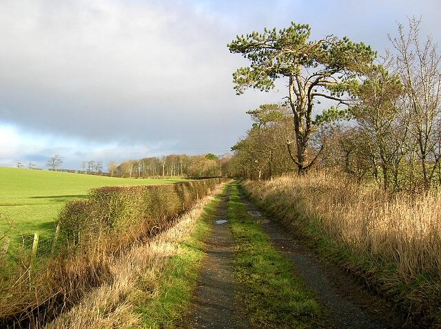 Track Near Craigrethill