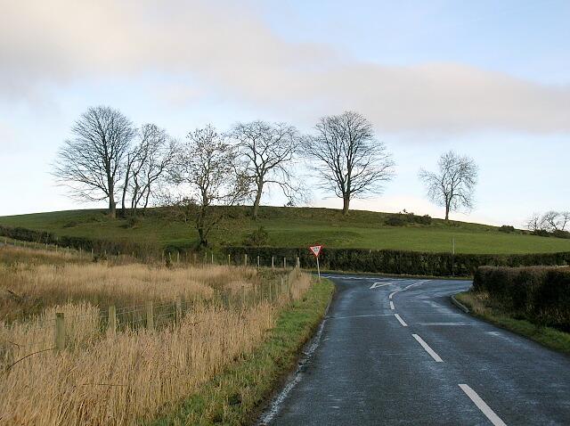 Hilltop Trees Near Symington