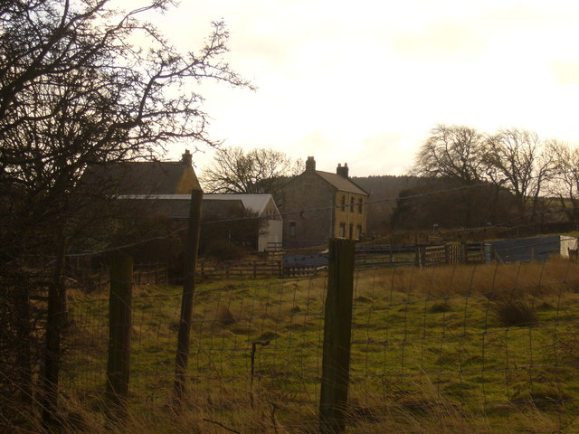 Holmside Hall