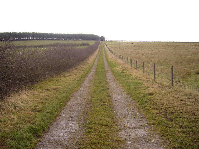 Public footpath leading to Long Edge