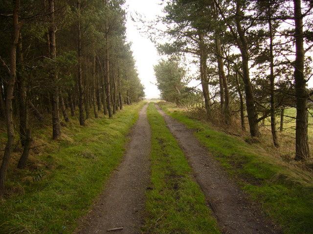 Public footpath approaching Long Edge