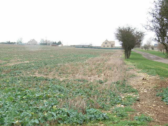 Beside Barley Lane